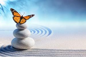 ateliers psychologie positive confiance en soi coaching